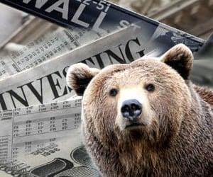שוק דובי
